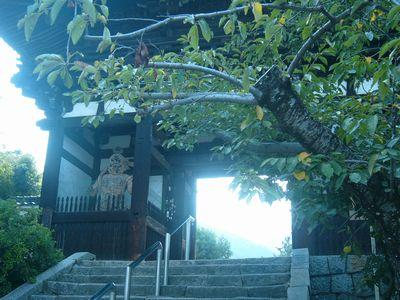 当麻寺山門.jpg