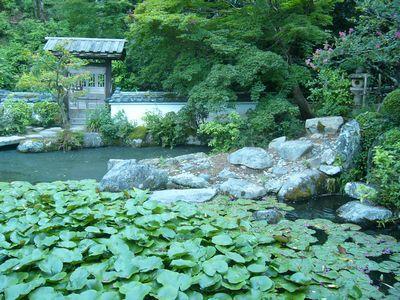 当麻寺庭園.jpg